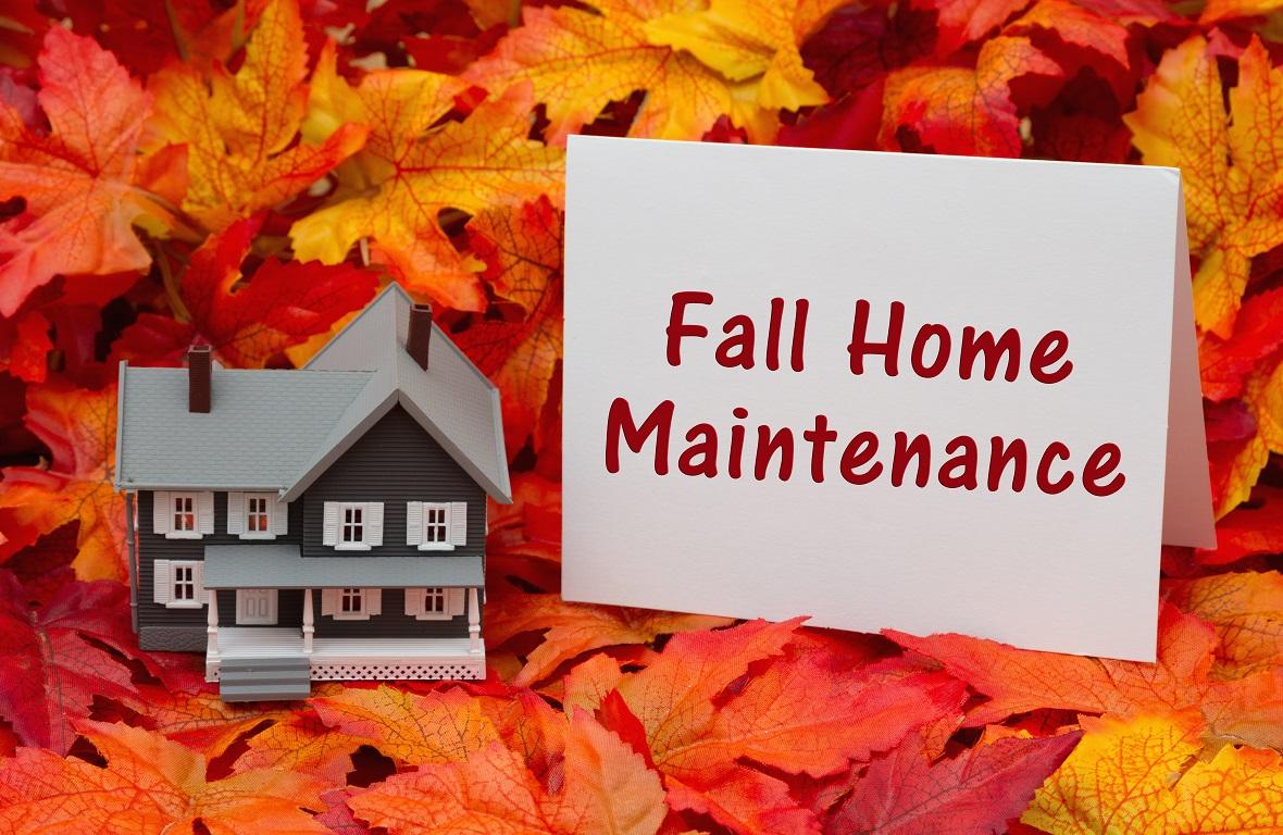 秋にやっておきたいマイホームクリーニング~ダニ、カビ、台風被害は放っておくと大変!