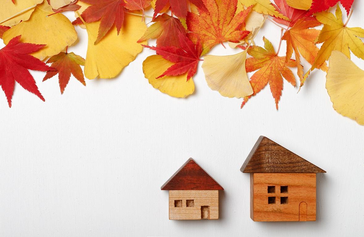 マイホームに秋を取り入れたい~簡単おしゃれな秋のDIY